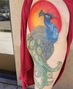 hollis-cantrell-iconic-tattoo-ink-peacock